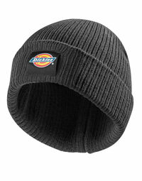 photo of Dickies Evadale Branded Beanie - DT8003