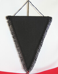 photo of Ready Range Triangular Pennant (10pk) - RR14